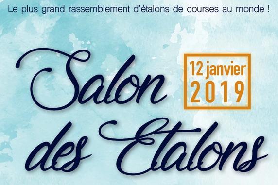 TECHNIBELT EST PRÉSENT AU SALON DES ETALONS DU LION D'ANGERS CE SAMEDI 12 JANVIER 2019 !